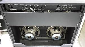 custom audio od100 4x10 cae hoes