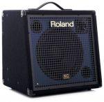 Roland KC-350 Hoes