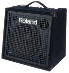 Roland KC-500 Hoes
